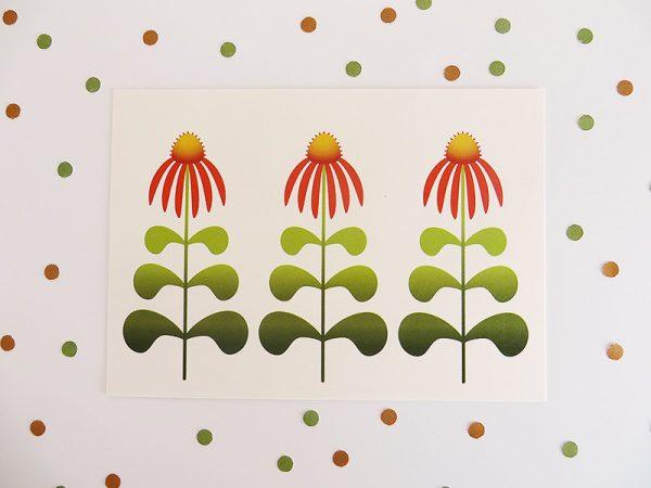 Wenskaart-Echinacea-liggend-confetti