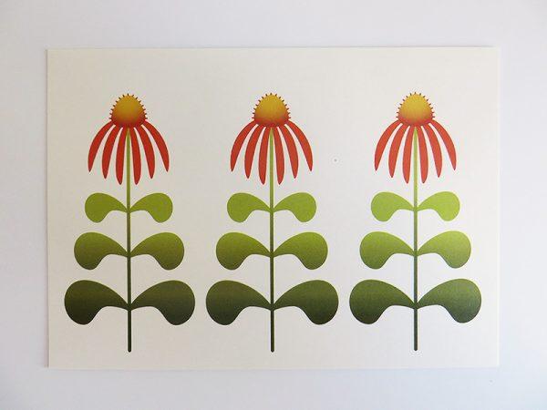 Wenskaart-Echinacea-liggend-recht