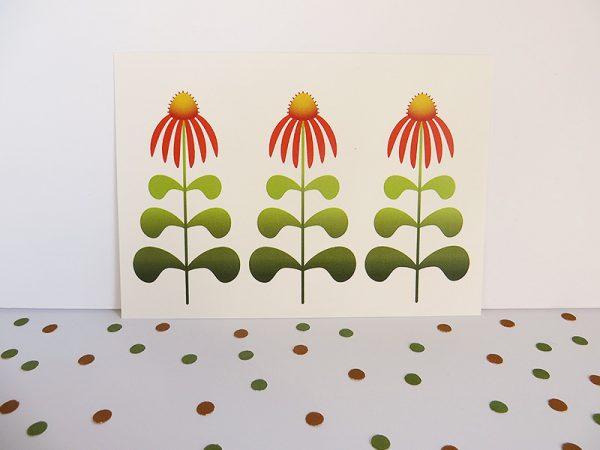 Wenskaart-Echinacea-staand