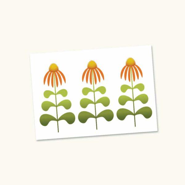 Mockup-Retrobloemen-Zonnehoed echinacea