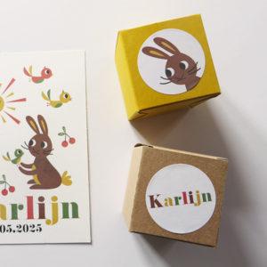 Geboortekaartje Karlijn met konijntje vogels zon en kersen 8