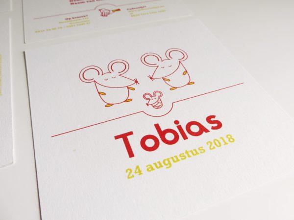 Geboortekaartje-Tobias-met-muisjes-1