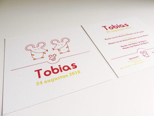 Geboortekaartje-Tobias-met-muisjes-2