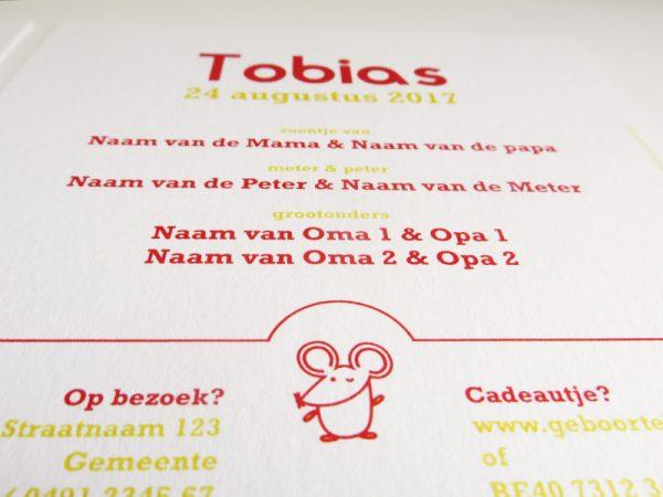 Geboortekaartje-Tobias-met-muisjes-3