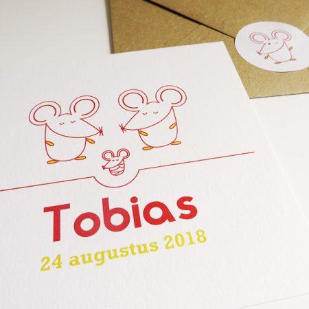 Geboortekaartje-Tobias-met-muisjes-4