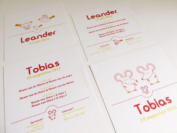 Geboortekaartjes-Tobias-en-Leander