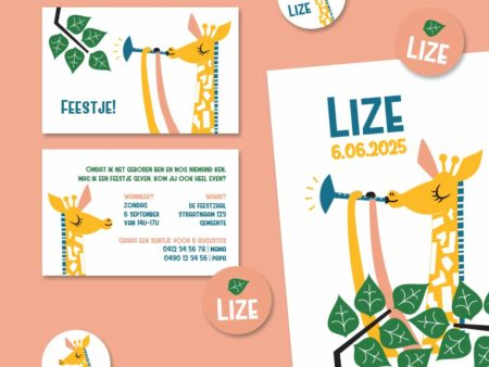 Geboortekaartje Lize Giraf speelt muziek 2