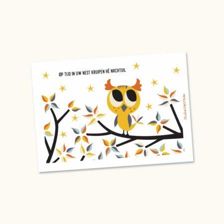 Kampkaartje Nachtuil Uil
