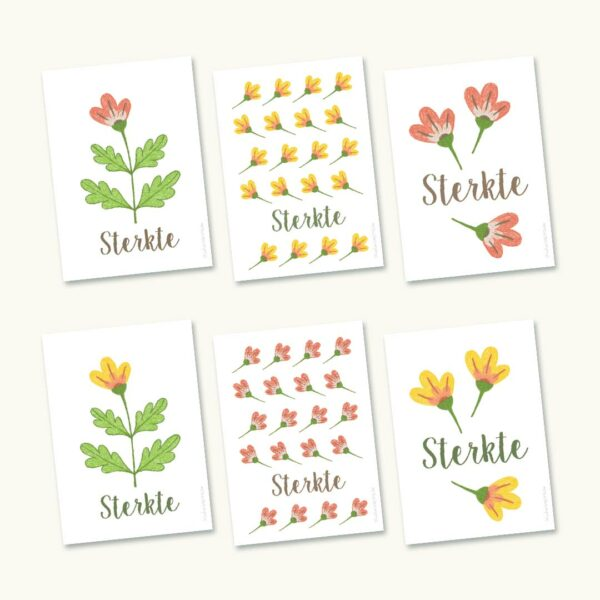 Pakketje van 6 hoopvolle sterktekaartjes met bloemen
