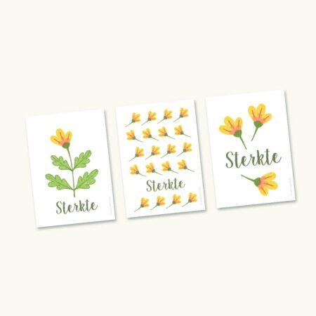 Pakketje van 3 hoopvolle sterktekaartjes met gele bloemen