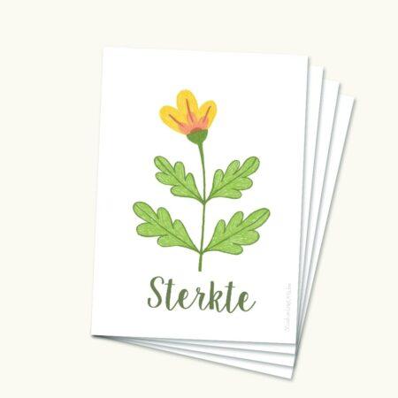 Pakketje Hoopvolle sterktekaartjes Grote bloem geel