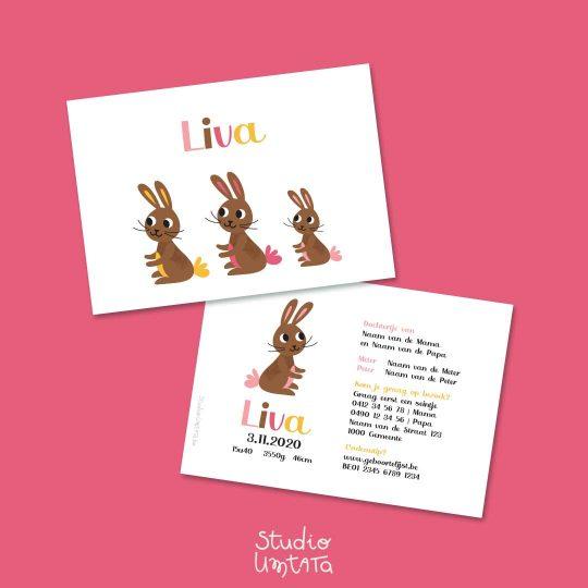 Lief geboortekaartje met konijntjes Liva
